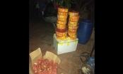 Hưng Yên: Khởi tố đối tượng buôn bán, vận chuyển  80kg pháo trái phép