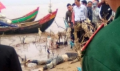 Thanh Hóa: Bàng hoàng phát hiện thi thể nữ giới trôi dạt vào bờ biển