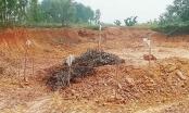 Hà Tĩnh: Phát hiện quả bom khoảng 2,5 tạ trên đồi