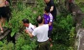 Hà Nội: Bắt sống đối tượng nghi bắt cóc trẻ em Phú Xuyên