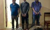 Quảng Bình: Bắt giữ 3 đối tượng trộm và tiêu thụ chó