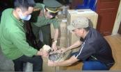 Thanh Hoá: Bắt 5 đối tượng mua bán trái phép hơn 200 kg thuốc nổ công nghiệp