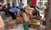 Bắc Giang: Bắt quả tang đối tượng vận chuyển số lượng khủng pháo lậu