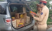 Thanh Hoá: Bắt giữ 11kg pháo nổ vận chuyển trái phép