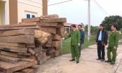 Quảng Bình: Đấu tranh chuyên án phá rừng với quy mô lớn, bắt giữ nhiều đối tượng