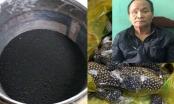 Thanh Hoá: Bắt quả tang đối tượng tàng trữ 17kg thuốc nổ và đạn súng tự chế