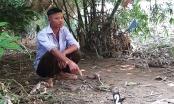 Lào Cai: Thôn đội trưởng là tay trong vụ 200 người xuất nhập cảnh trái phép