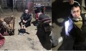 Quảng Bình: Khởi tố 2 đối tượng trộm chó
