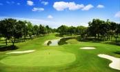 96 sân golf vẫn xà xẻo đất nông nghiệp