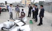 Thanh tra Chính phủ phối hợp với Tổng cục Hải quan bắt lô hàng chứa vẩy tê tê