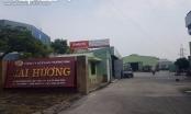 Phát lộ hàng loạt sai phạm về môi trường của Công ty CP Thương mại Mai Hương