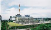 Cán bộ vi phạm tại Công ty Nhiệt điện Phả Lại: TGĐ nói sẽ xử lý nghiêm