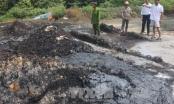Bắc Giang: Xử phạt 225 triệu đồng đối với lái xe chở hơn 43 tấn chất thải nguy hại