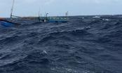 4 ngư dân từ cõi chết trở về và chàng trai cứu người giữa sóng dữ Hoàng Sa