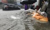 """Lượng mưa kinh hoàng đến mức nào mà có thể """"nhấn chìm"""" thành Vinh"""