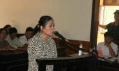 Hà Tĩnh: Tham ô tài sản, nữ thủ quỹ xã lĩnh 12 năm tù giam