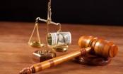 """""""Bao"""" án treo thất bại, luật sư bị kiện"""