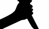 Vợ hiền hóa ác nhân, gây thảm án giết người sau ngày bị cướp chồng
