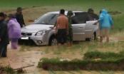 Thanh Hóa: Bão giật mạnh, ô tô lao xuống ruộng