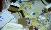 Bình Dương: Phá đường dây làm bằng cấp, giấy tờ giả