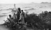 Bình Định: Điều tra vụ chìm 10 tàu hàng khiến nhiều thuyền viên chết và mất tích