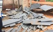 Bình Định: Cần xử lý nghiêm minh hành vi hủy hoại tài sản của công dân