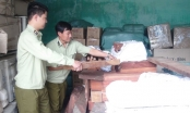 Quảng Nam: Phát hiện xe tải chở hơn 1,7 tấn gỗ quý không rõ nguồn gốc