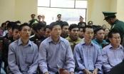 Vụ phá rừng Pơ Mu ở Quảng Nam: Cứ làm tẹt ga, không sao đâu
