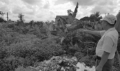 Vụ bí thư, chủ tịch HĐND xã bị tố sai phạm ở Tứ Kỳ, Hải Dương: Phải sớm xử lý dứt điểm