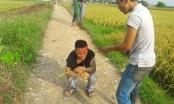 Thanh Hóa: Bắt đối tượng côn đồ thu tiền bảo kê máy gặt trên đồng