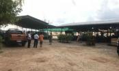 """Bình Thuận: 5 cơ quan """"vào cuộc"""" vẫn chưa làm rõ sai phạm của doanh nghiệp Triều Trang"""