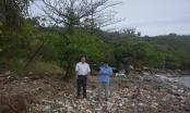 Khánh Hòa: Sai sót trong bồi thường đất tại Dự án Khu du lịch Hòn Một