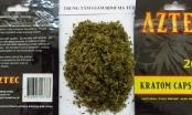 Phát hiện nhiều chất ma túy mới gây ảo giác mạnh