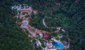 """12 năm sau thanh tra, rừng Sóc Sơn bị """"xẻ thịt"""" khủng khiếp hơn"""