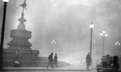 """Đợt sương mù 5 ngày chết chóc ở """"xứ sở sương mù"""""""