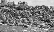 Mối nguy từ những đống rác Mỹ phát tán khắp thế giới