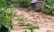 Các ban ngành, địa phương khẩn trương khắc phục hậu quả bão số 3