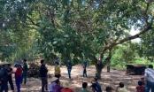 Tìm thấy thi thể bé trai 4 tuổi  tử vong dưới chân núi