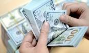 Điều tra vụ nữ giám đốc lừa đảo hàng nghìn USD của người đàn ông ngoại quốc