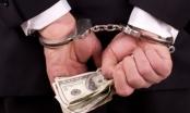 Nguyên Phó Tổng Giám đốc Công ty HTV nhận 8 năm tù vì lừa đảo