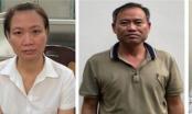 Bắt giam thêm 4 bị can vụ nâng khống giá cây xanh tại Hà Nội