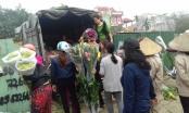 Hà Nội: Hoa ly rớt giá thê thảm, người dân rủ nhau giải cứu