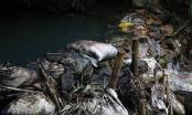 """Nữ giám đốc thuê nhóm đối tượng """"đầu độc"""" nguồn nước sạch sông Đà là ai?"""