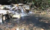 Nước sạch sông Đà đã an toàn, người dân tiếp tục sinh hoạt, ăn uống