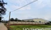 Từng tự ý cho thuê đất trái thẩm quyền, UBND xã Thọ Vinh được đưa vào kế hoạch thanh tra năm 2021
