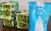 Triệt phá, bắt giữ nhóm đối tượng vận chuyển ma túy từ Campuchia về TP HCM tiêu thụ
