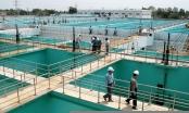 Hà Nội: Chuẩn bị đầu tư 2 dự án cấp nước công suất lớn