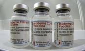 Hội đồng chuyên môn Bộ Y tế họp bàn việc tiêm trộn vắc-xin Covid-19