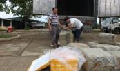 Người dân Sài Gòn suýt phải ăn 6 tấn thịt thối
