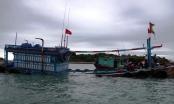 Cứu được 5 thuyền viên trên tàu cá gặp nạn